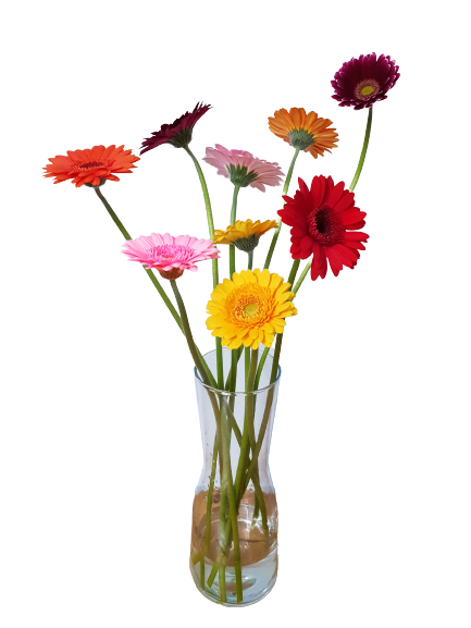 Sklenená váza 30 cm