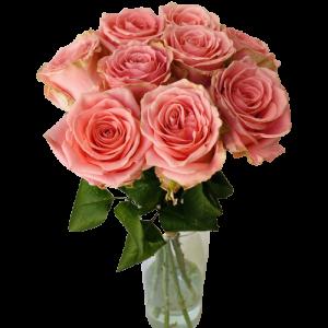 Kytica ružových ruží Sophia