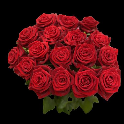 Kytica červených ruží Amore